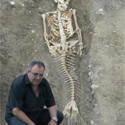 Скелет русалки, найденный Божидаром Димитровым