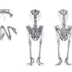 Скелет дага. Концепт-арт Террил Витлач