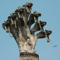 Наг Мукалинда защищает медитирующего Будду. Скульптура из Будда-парка (Лаос)