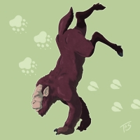 Подорожный шмыг. Иллюстрация Трэйси Шепарда