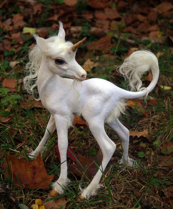 http://www.bestiary.us/files/images/unicorn-baby.jpg