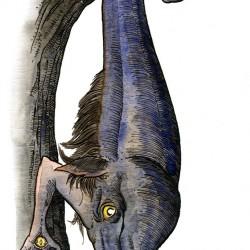 Сагари. Иллюстрация Ричарда Свенссона